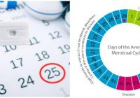 menstrual cycle calculator safe days
