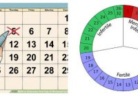 menstrual cycle calendar and safe days