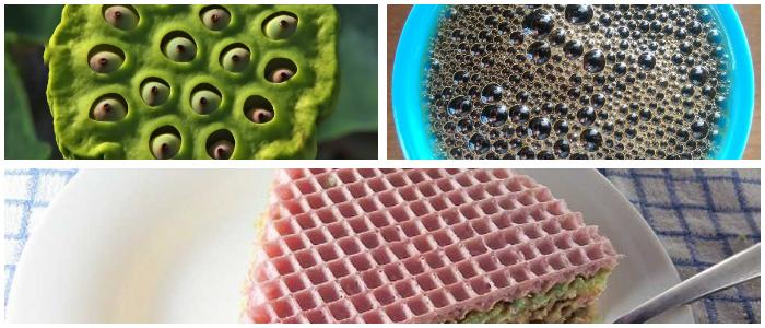 What Is Trypophobia Definition Causes Symptoms And Treatment