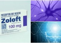 zoloft 100mg anxiety